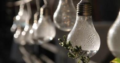 Pear Garden Garland Lamp  - HS120 / Pixabay