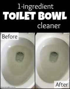 1-Ingredient Toilet Bowl Cleaner