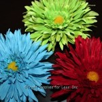 Daisy Flower Magnets