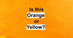 Is This Orange Or Yellow?