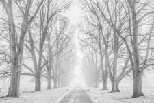3. Winter Wonderland