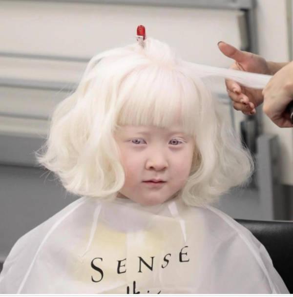 7. Albino Beauty