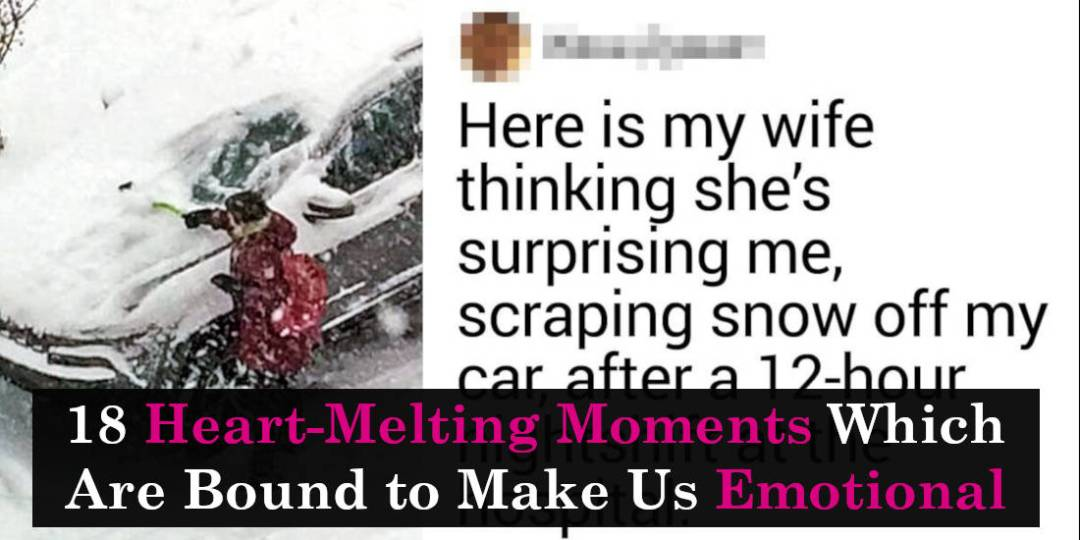 18 Heart-Melting Moments Which Are Bound to Make Us Emotional