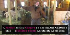 A Farmer Set His Camera To Record And Captured This — 12 Million People Absolutely Adore Him