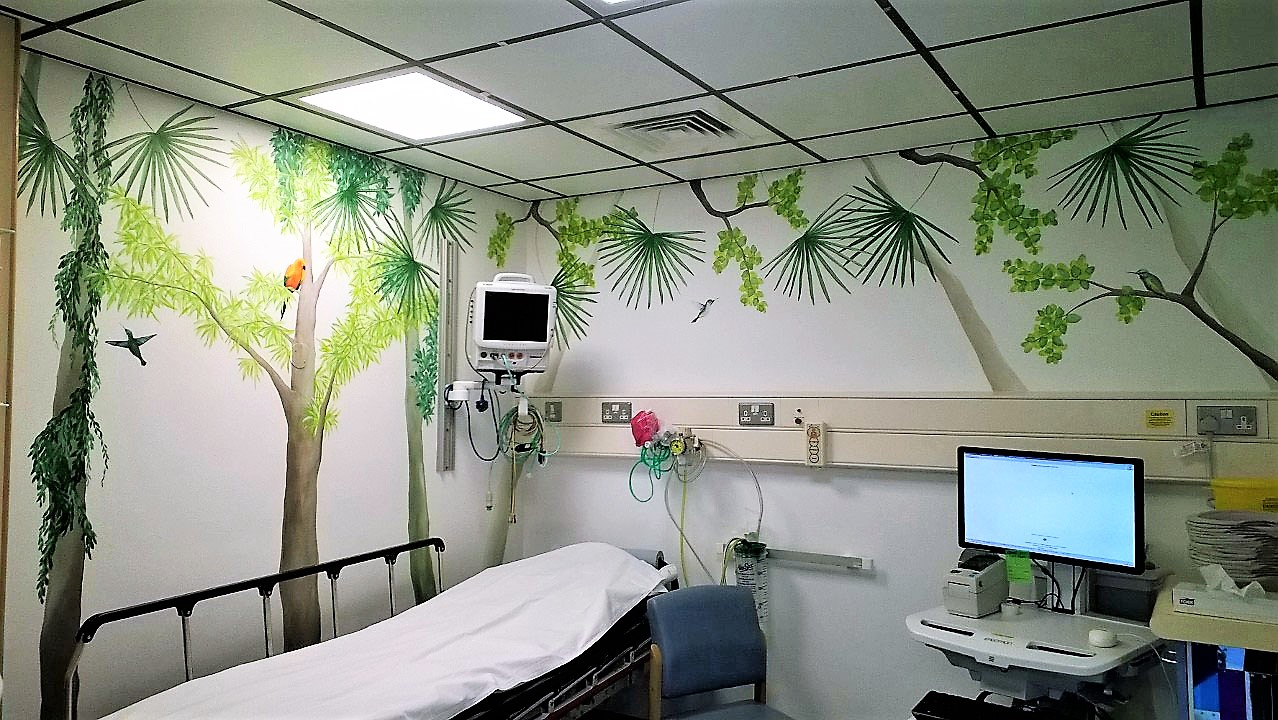 Contemporary Wall Murals Custom Painted By Mural Aritst