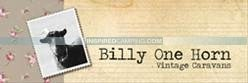 Billy One Horn Image Inspired Camping Cool Camping Campsite