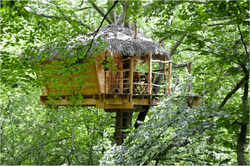backyard treehouse designs