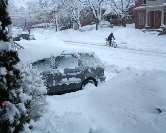 matcha snow storm