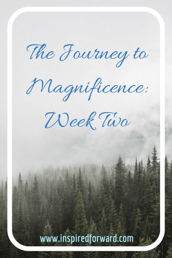 JTM Week Two Pinterest