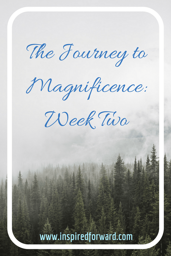 JTM Week Two Pinterest