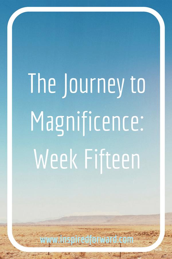 JTM Week Fifteen Pinterest v3