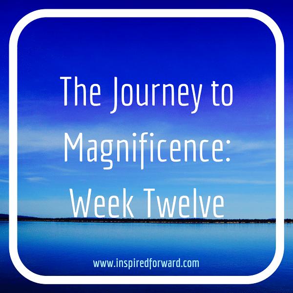JTM Week Twelve Instagram