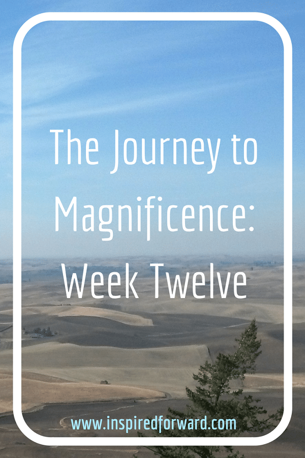 JTM Week Twelve Pinterest v2