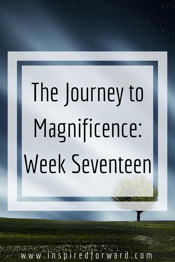 week-seventeen-pinterst-v1