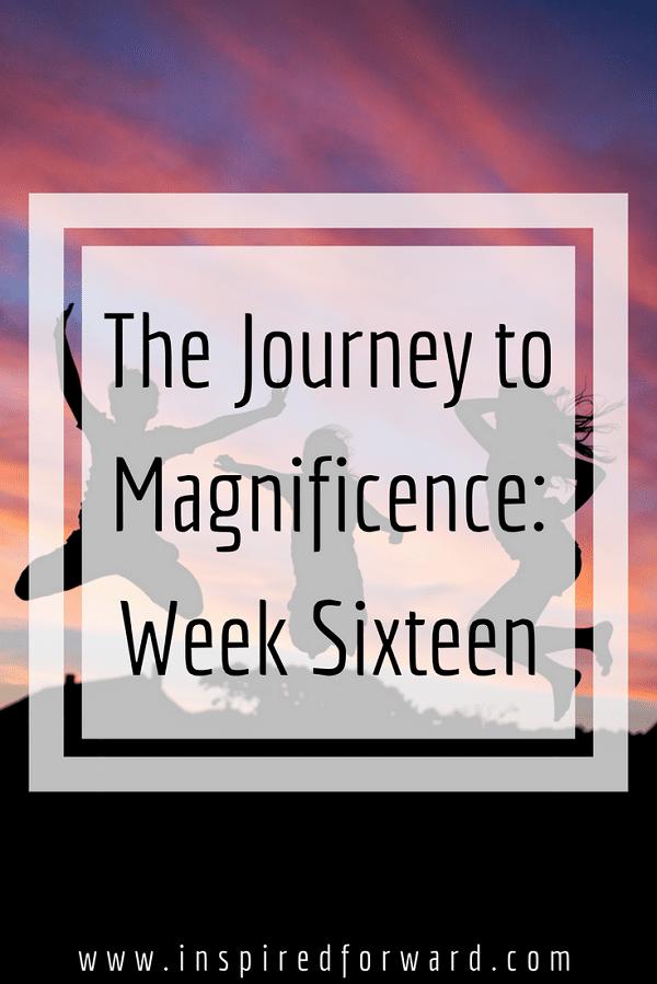 week-sixteen-pinterst-v1