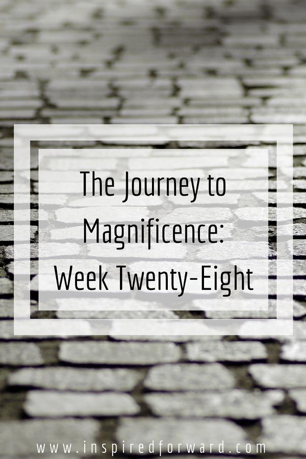 week twenty-eight pinterst-v1