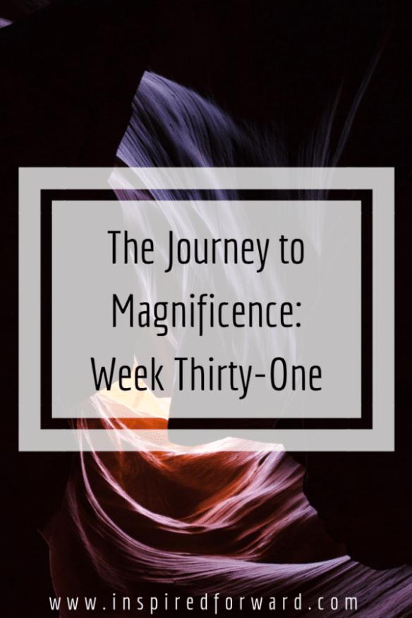 week thirty-one pinterest