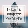 The Journey to Magnificence: Week Thirty-Five
