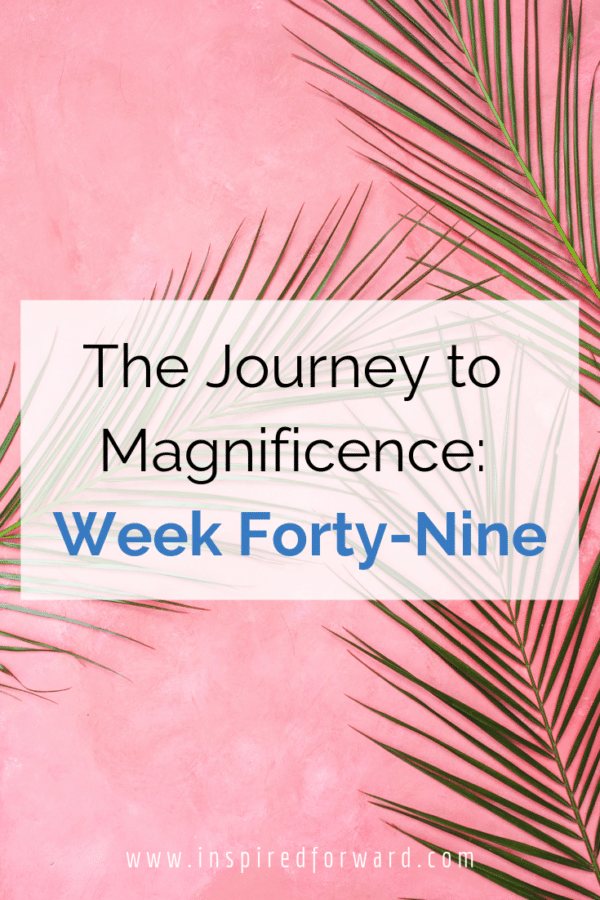 "Week forty-nine ended up turning my ""champagne moment"" on its head because VA pitching pays off! Stepping outside of the comfort zone really helps."