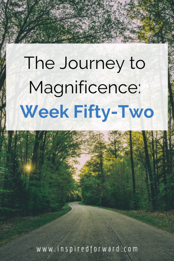 Week fifty-two has finally come and gone -- the end of this journey series documenting my progress through side-hustle endeavors and improving myself.