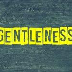 GENTLENESS – Fruit of the Spirit