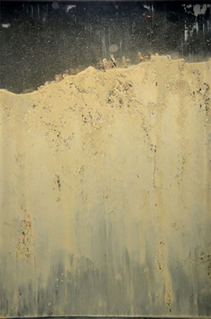 Sediment Profile Image - SPI- collected at Milford Haven