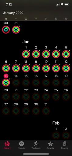 January Activity Rings