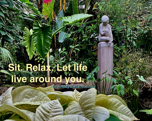 Sit. Relax. Let life live around you.