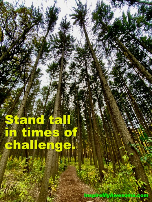 Stand Tall In Times of Challenge.