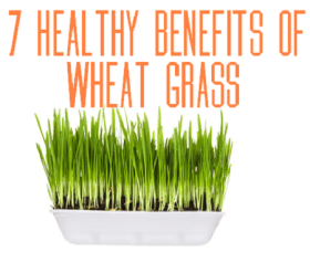 7 Healthy Benefits of Wheat Grass