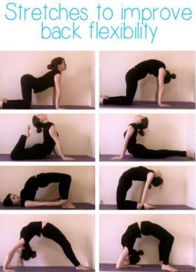 Stretches for your back