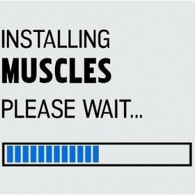Installing MUSCLES. Please wait …
