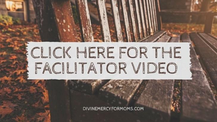 view the facilitator video2