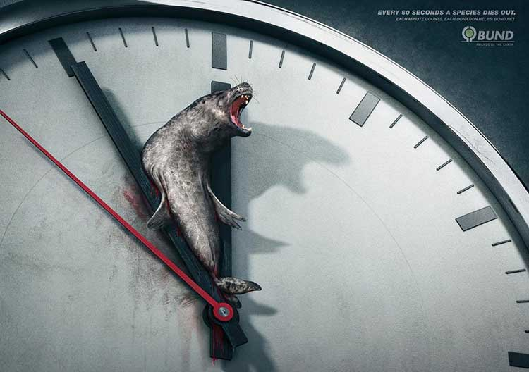 Shock ads Examples - protection of animals