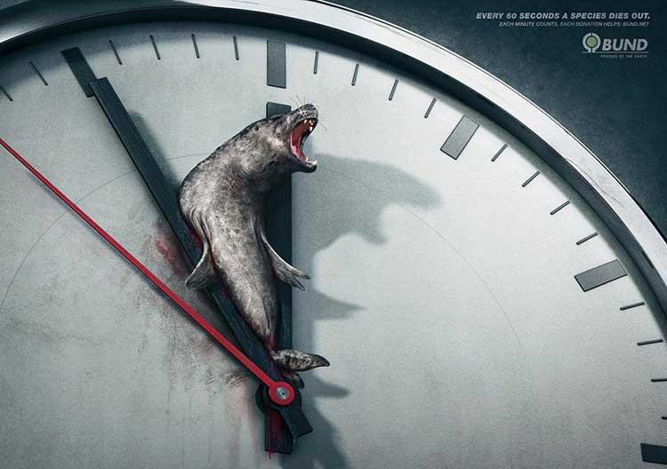 Esempi pubblicità scioccanti - tutela animali