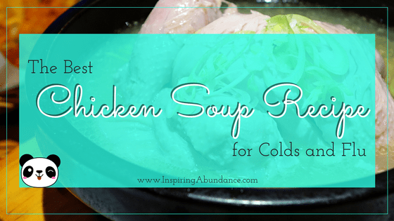 best chicken soup for cold and flu
