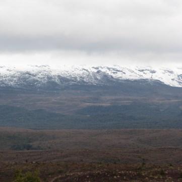 View towards Mt Ruapehu
