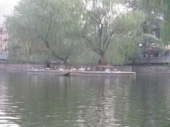 Old Zhengzhou 5-9-13 205