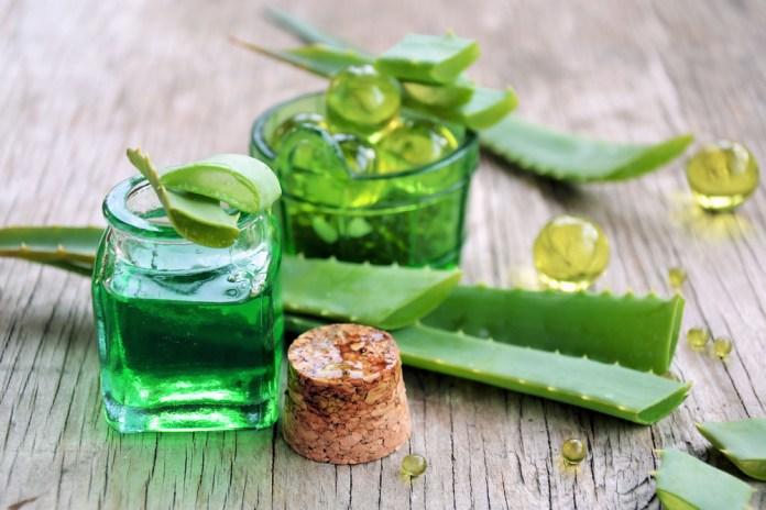 Aloe vera gél a jeho kozmetické účinky