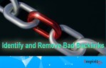 Identify and Remove Bad Backlinks