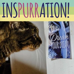 Inspurration! Posters for Cats