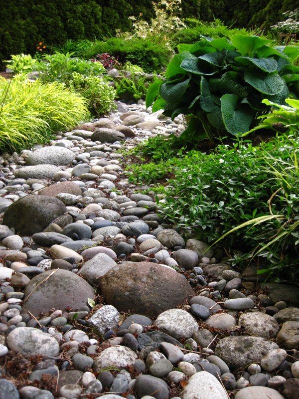 rocks enhance landscape
