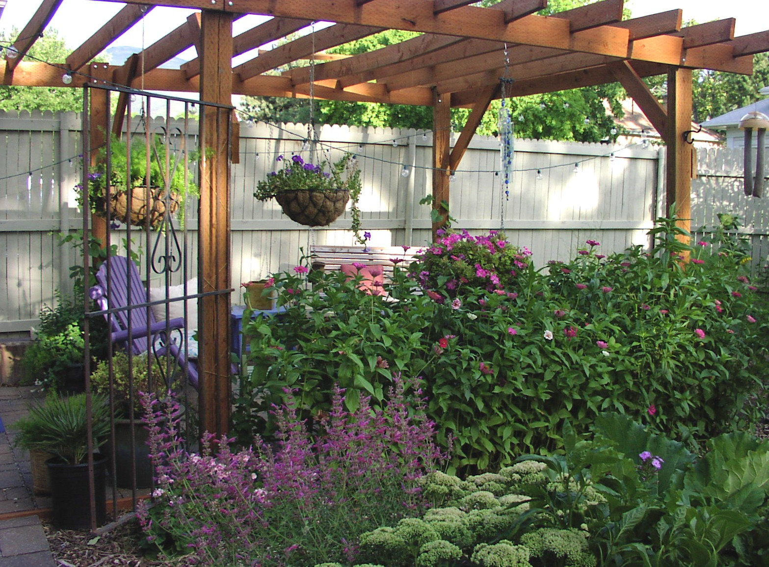 Landscaping Ideas For Privacy Guide Tips Ideas