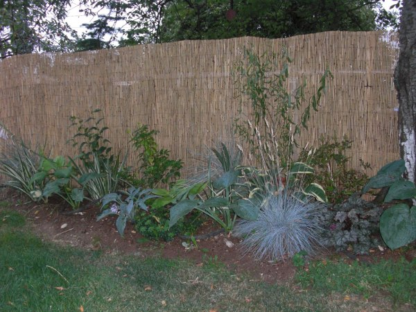 landscaping ideas hide ugly