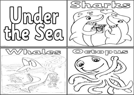 KS1 and KS2 Science Teaching Resources, Posters for