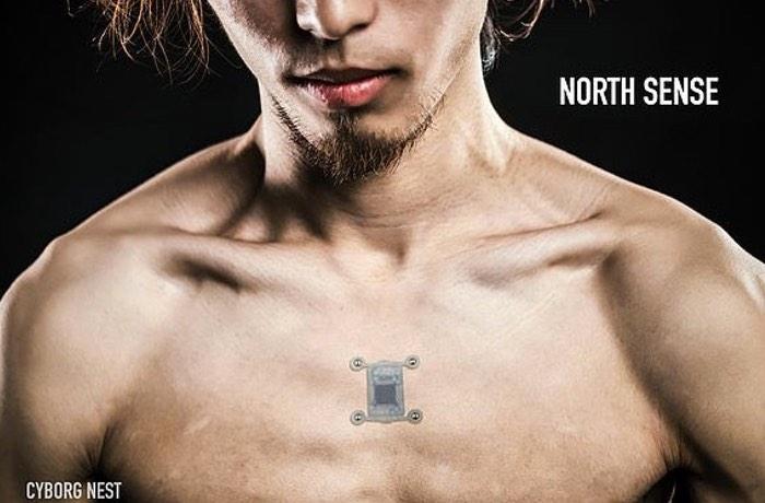cyborg-nest-north-sense-2
