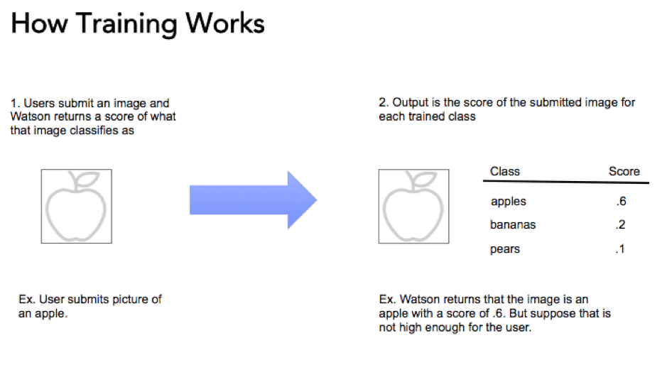 ibm-watson-visual-recognition