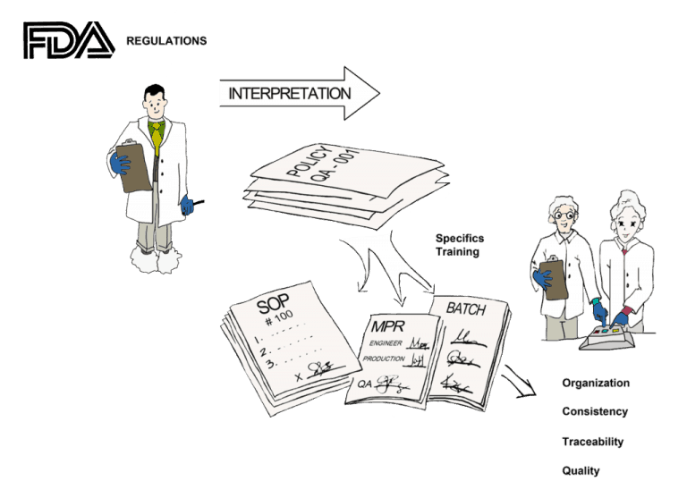 Standard Operating Procedure Templates for Manufacturing