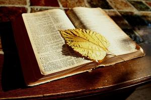 The Gospel of Christ in the Old Testament @ First Baptist Church of Cashion, Oklahoma