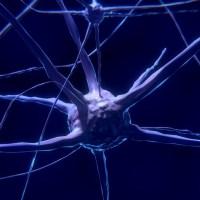 Implant cérébral, Libra, captage du CO2 et IA : les 4 infos tech de la semaine du 17 juin
